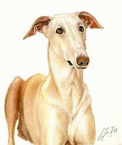 � Original Oil DOG Portrait Painting WINDHUND Artwork �