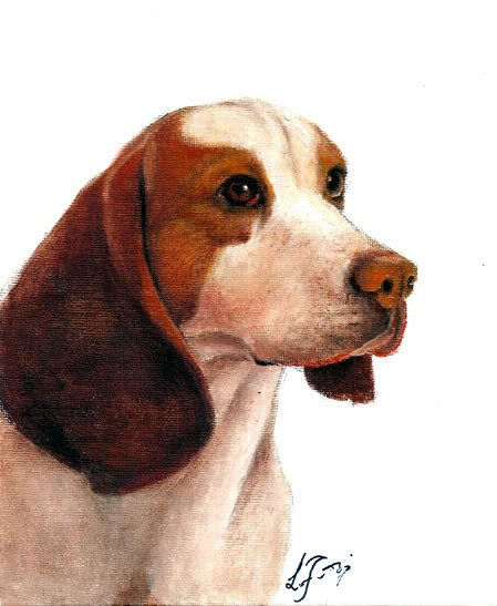 � Original Oil DOG Portrait Painting Art BEAGLE Artwork