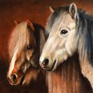 ★ Original Oil Portrait Painting Art ICELANDIC HORSES ★