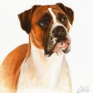 ★ Original DOG Oil Portrait Painting Art BOXER Artwork