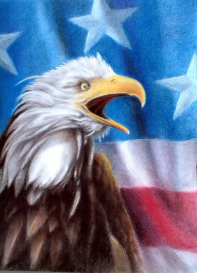 � Original Pastel Painting Drawing American Eagle Flag
