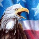 ★ Original Pastel Painting Drawing American Eagle Flag