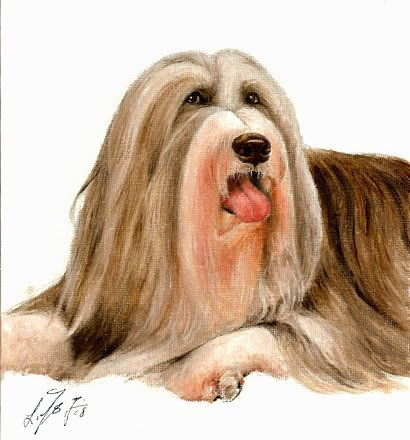 � Original Oil DOG Portrait Painting BEARDED COLLIE Art