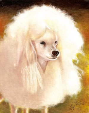 � Original Oil DOG Portrait Painting Art WHITE POODLE �