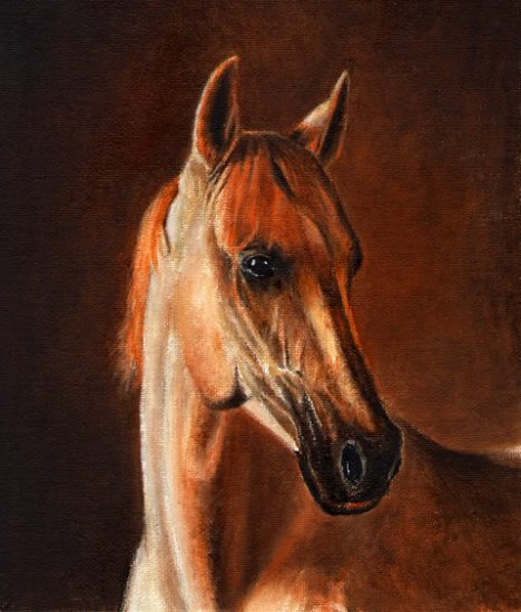 �Original Oil Portrait Painting LIPPIZAN STALLION Horse