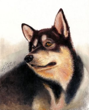 � Original Oil DOG Portrait Painting ALASKAN MALAMUTE �