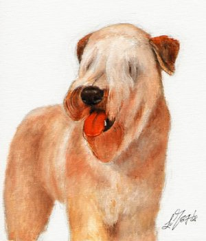 * Original Oil DOG Portrait Painting WHEATEN TERRIER
