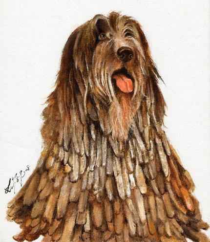 �Original Oil DOG Portrait Painting BERGAMASCO SHEEPDOG