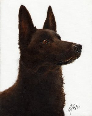 * Original Oil DOG Portrait Painting AUSTRALIAN KELPIE