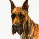 ♥ Original Oil DOG Portrait Painting GREAT DANE Artwork
