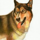 ♥ ORIGINAL Oil DOG Portrait Painting ALASKAN MALAMUTE
