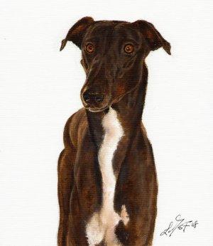 � Original Oil DOG Portrait Painting Art GREYHOUND �