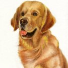 ♥ Original Oil DOG Portrait Painting GOLDEN RETRIEVER ♥