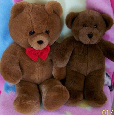 Lot of 2 Stuffed Animal Bears, Build - A - Bear, Dakin