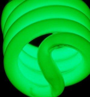 Green Light 8X10