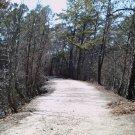 Deserted Trail 8X10