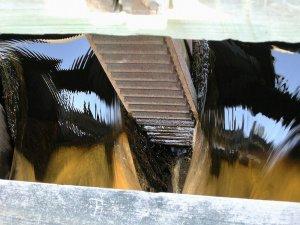 Flowing Water 8X10