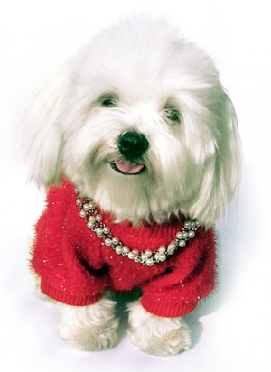 RED GLITTER KNITTED SWEATER W PEARLS
