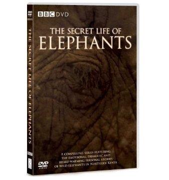 The Secret Life of Elephants DVD