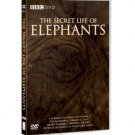 The Secret Life of Elephants DVD