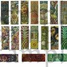 19 Vintage Art Nouveau Designs JewelTone 1x3s for Micro Slides Digital Collage Sheet