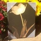 "Elegant Yellow Tulip Picture on Black Background 6 1/2"" x 8 1/2"""