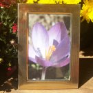 """Gold Tone Metal Photo Picture Frame 3 1/2"""" x 5 1/2"""" Inside Measurement"""
