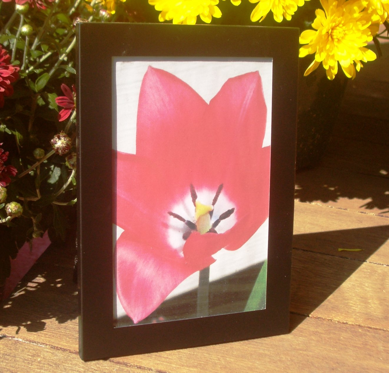 "Simple Black Metal Picture Frame 3 1/2"" x 5 1/2"" Inside Measurement"