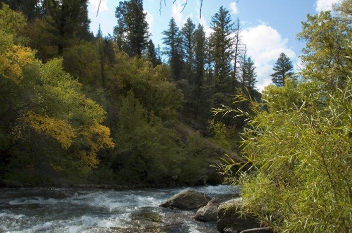 Logan River Rapids