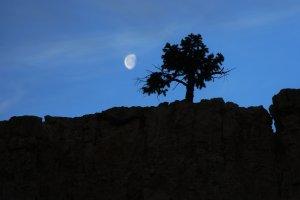 Moonset at Bryce Canyon