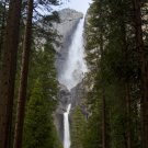 Grand Path to Yosemite Falls