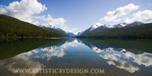 """Serenity in the Waters - 10""""x 20"""" Signed Print"""
