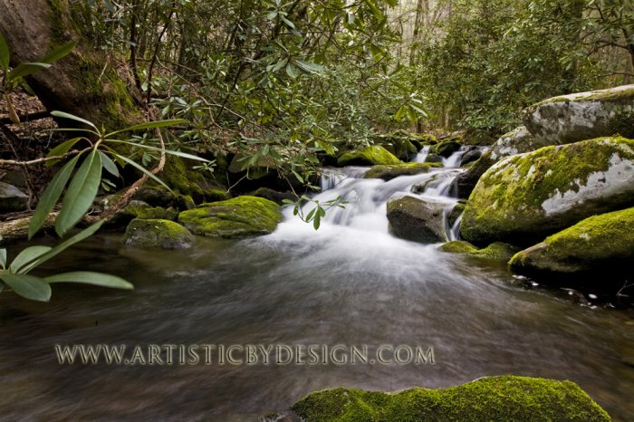 "Cascading Falls of Anthony Creek - 20""x 30"" Signed Print"