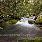 "Cascading Falls of Anthony Creek - 20""x 30"" Signed Print"