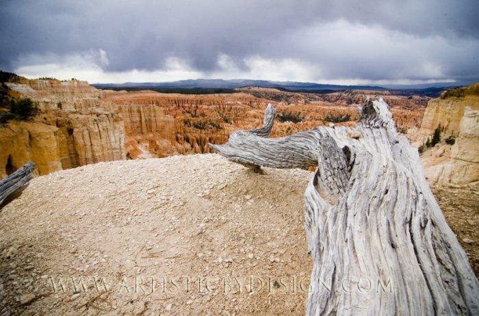 "Heading Towards the Utah Wilderness -20""x 30"" Signed Print"