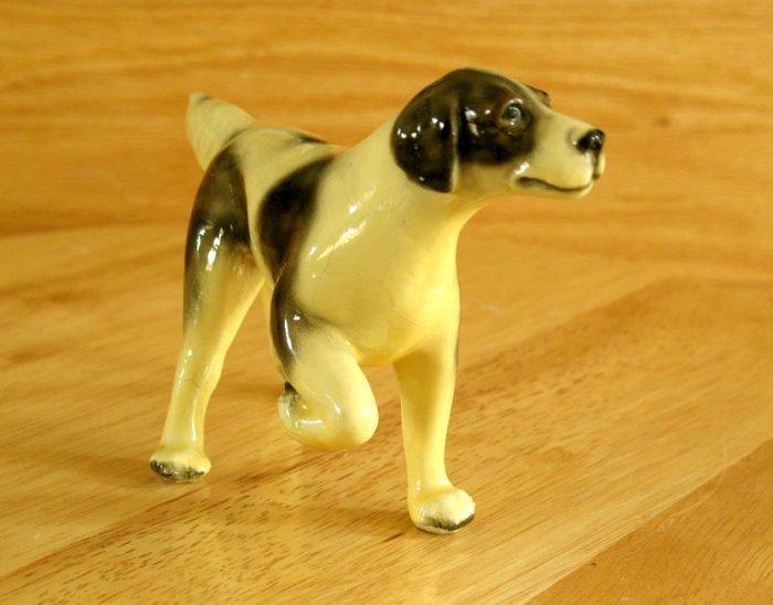 Hunting Dog English Setter