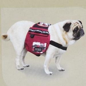 Outward Hound Urban Adventure Backpack - Small