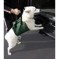 Outward Hound Up & Out Lift Harness for dogs. A lightweight alternative to pet ramps