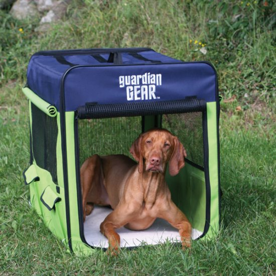 Small Guardian Gear Collapsible Dog Crate Kennel Pink/Green