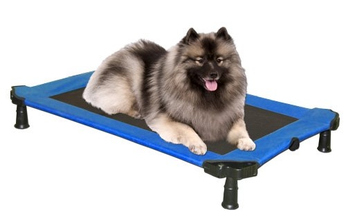 """Medium Pet Gear Portable Pet Cot Dog Bed ~ Sky Blue ~ 36""""L x 24 """"W x 5""""H"""