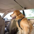 Kurgo Auto Zip Line w/ Dog Harness MEDIUM 25 - 50 lbs. Pet Car Safety