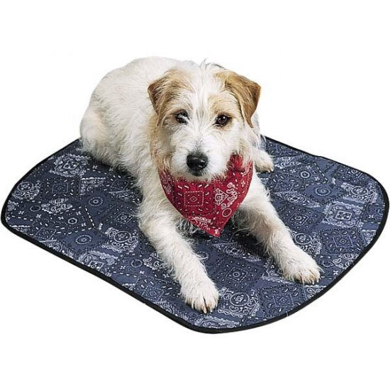 Miracool Doggie cooling Mat Puppy Warming Pad Crate Kennel Large 36 x 26