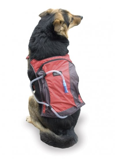 Outward Hound H2O Water Hydration Pack for dogs size Large