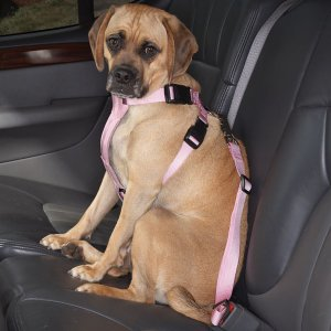 "Cruising Companion Auto Car Safety Dog Harness Small Medium 12""-28"" Blue, Black, Pink"
