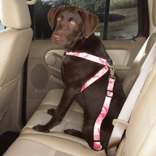 """Cruising Companion Camouflage Auto Car Safety Dog Harness X-Small 7""""-16"""" Green or Pink"""