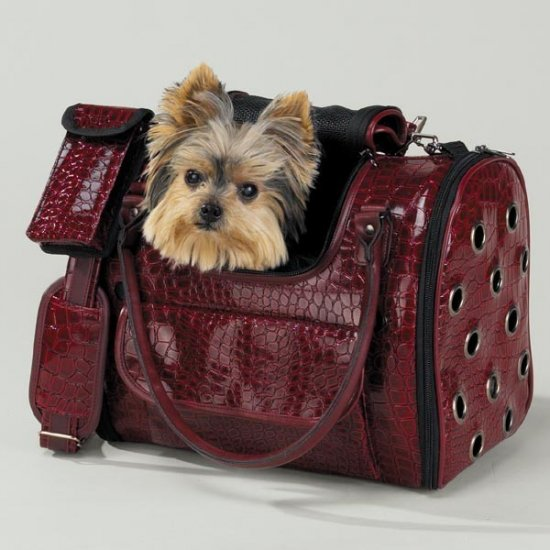 East Side Collection Croc Carrier Tote Pet Dog Cat Purse Airline Approved Chocolate Cranberry MEDIUM