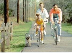Springer Leash Bike Attachment Bicycle Control Dog Lead
