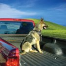 Kurgo K-9 Truck Tether for dogs - secure restraint system specifically designed for pickup trucks