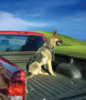 Kurgo K-9 Truck Tether for dogs - secure restraint system specifically designed for pickup trucks