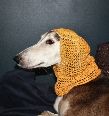 Harem snood - yellow